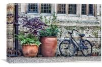 Pots and Bicycle, Canvas Print