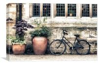 Bicycle and Pots, Canvas Print