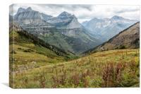 Splendor from Highline Trail - Glacier, Canvas Print