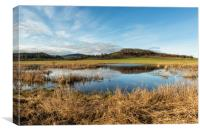 William L Finley National Wildlife Refuge, Canvas Print