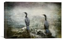 Two Cormorants, Canvas Print
