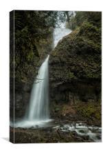 Upper Latourell Falls, No. 1, Canvas Print