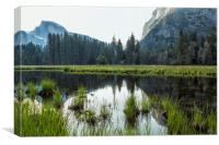 Morning In Cook's Meadow, Canvas Print