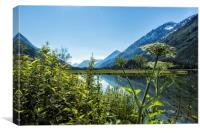 Wildflowers by the Side of Tern Lake, Canvas Print