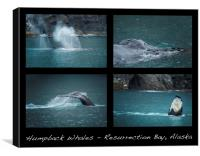 Humpback Whales Collage, Canvas Print
