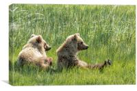 Unbearably Cute - Bear Cubs, No. 5, Canvas Print