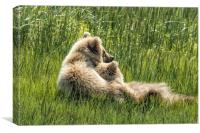 Best Friends Fur Ever - Bear Cubs, No. 8, Canvas Print