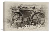 The Old Bike, Canvas Print