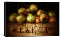 Painted Apples in Crate, Canvas Print