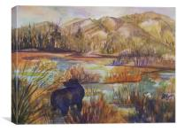 Bear in the Slough, Canvas Print