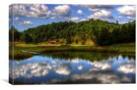 North Carolina Pond, Canvas Print