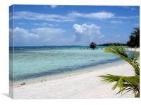 Tikehau beach and lagoon, Canvas Print
