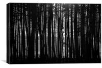 Barcode Trees (version 2), Canvas Print