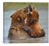 Bear Hug, Canvas Print