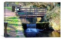 Glamorganshire Canal, Canvas Print