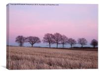 Pastel Treeline in February, Canvas Print
