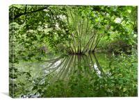 Hidden Fishing Lake, Canvas Print