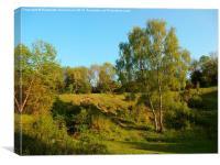 Roughdown Common, Hemel Hempstead, Canvas Print