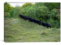 Guardians of the Nature reserve at Aston Clinton, Canvas Print