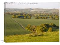View from Ivinghoe in Spring, Canvas Print