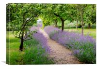 Chenies Manor Kitchen Garden, Canvas Print