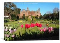 Spring Tulips at Chenies Manor Sunken Garden