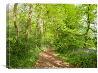 Ethereal Woodland Glade, Canvas Print