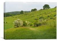 A Walk at Ivinghoe, Canvas Print