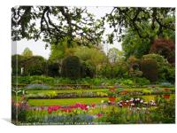 Spring layers of tulips and paths at Chenies., Canvas Print