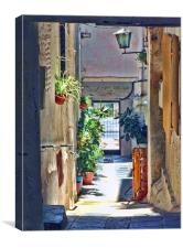 An alleyway in Lanjaron, Canvas Print