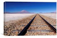 Bolivian Altiplano, Canvas Print
