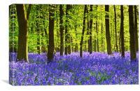 Carpet of Blue, Canvas Print