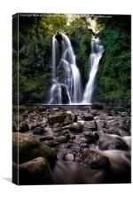 Exotic Waterfall, Canvas Print