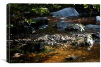 The raging river calm spot - Lake district, Canvas Print