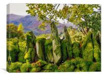 Lake District , Canvas Print