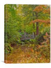 Autumn Garden, Canvas Print