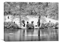 Park in Snow, Canvas Print