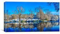 Park in Winter , Canvas Print