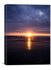 Three Birds at Sunset, Canvas Print