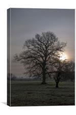 Autumn morning in Lincolnshire, Canvas Print