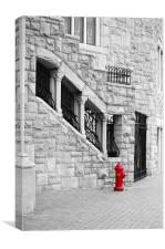A Little Red, Canvas Print