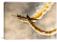 Swip Team Stunt Planes, Canvas Print