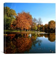 Reflection in the Park, Canvas Print