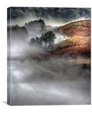 Hill Mist, Canvas Print