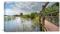 Chasewater, Canvas Print