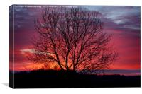 Autumn Sunrise At Chasewater, Canvas Print