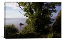 View From Torquay South West Coastal Path, Canvas Print
