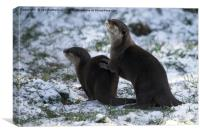 Otters In The Snow, Canvas Print
