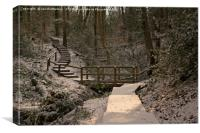 Snowy Ironbridge Gorge, Canvas Print