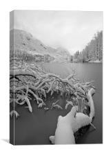 Wintry Lake Bohinj, Canvas Print